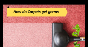 Carpets Host for diseases