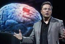 Elon Musk's IQ and Success
