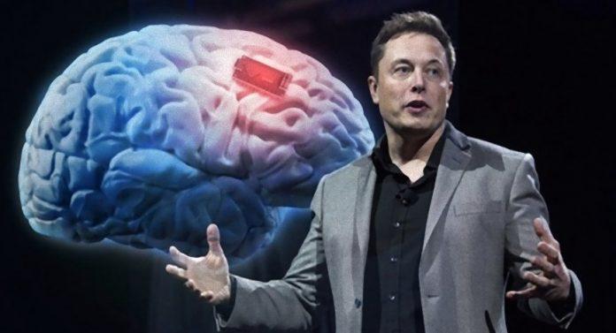 Elon Musk's IQ and Success